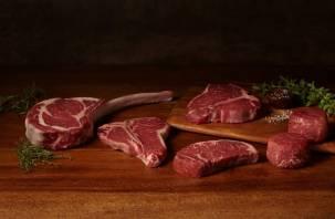 В Смоленской области произведут много качественной говядины