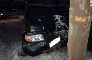 В Смоленской области девушка-водитель врезалась в столб