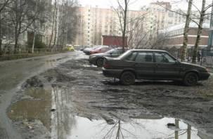 Роспотребнадзор призывает смолян очистить город от грязи