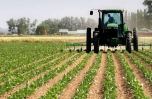 Начинающие фермеры из Смоленской области получат поддержку от правительства РФ