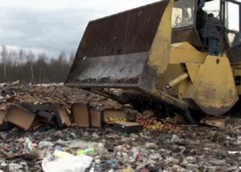 В Смоленске ликвидированы польские санкционные продукты