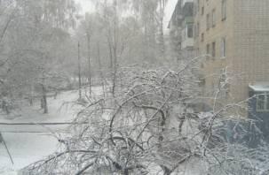 В Смоленске похолодало и выпал снег