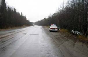 В Вяземском районе авто влетело в кювет