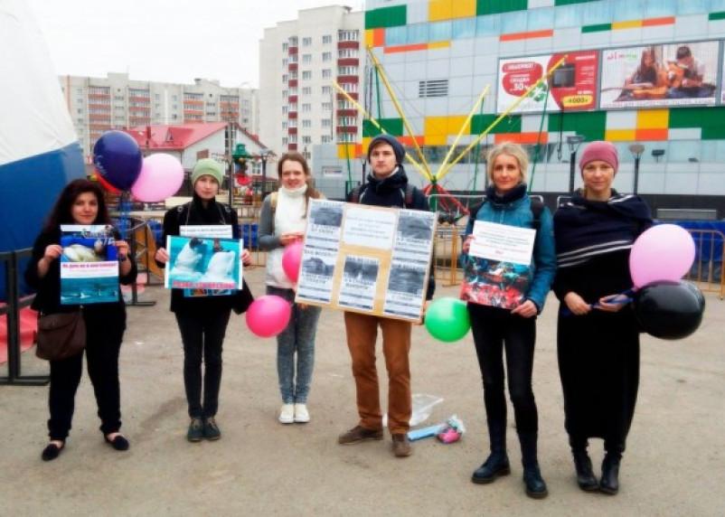 В Смоленске прошел еще один пикет в защиту дельфинов