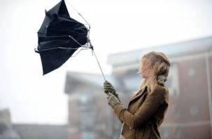МЧС предупреждает: на Смоленщину надвигается штормовой ветер