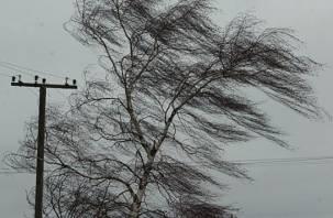 МЧС объявило штормовое предупреждение на Смоленщине