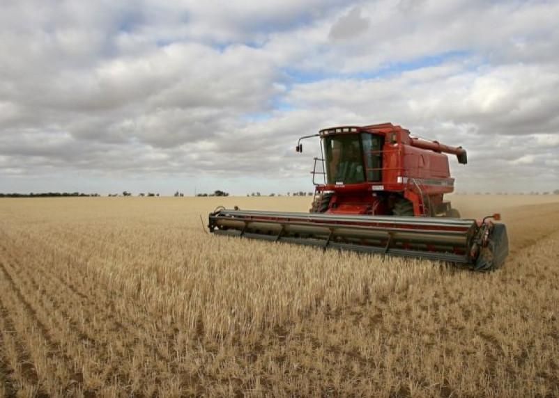 Смоленским фермерам невыгодно брать кредиты