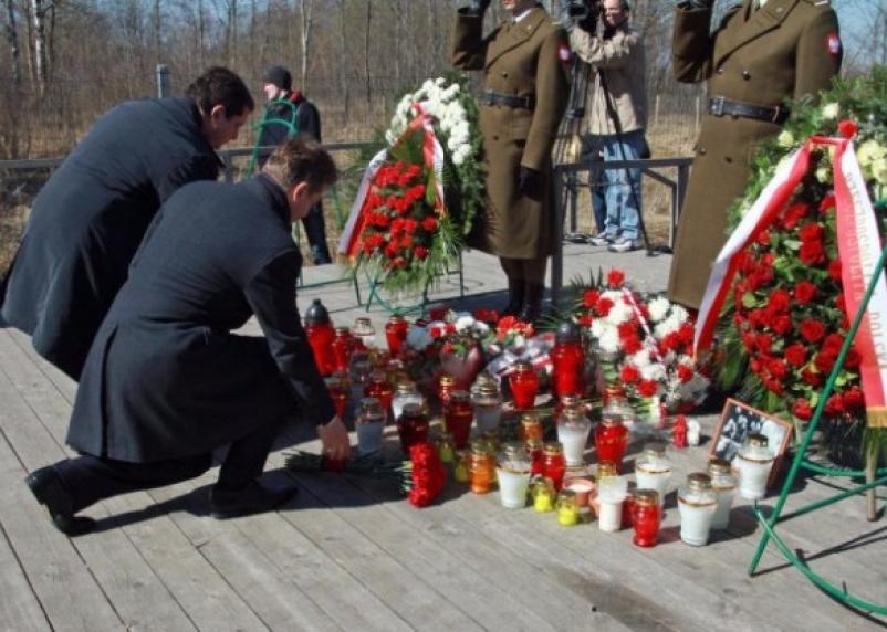 Польская делегация посетит место авиакатастрофы под Смоленском