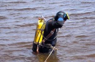 В Смоленской области в озере обнаружены два утопленника