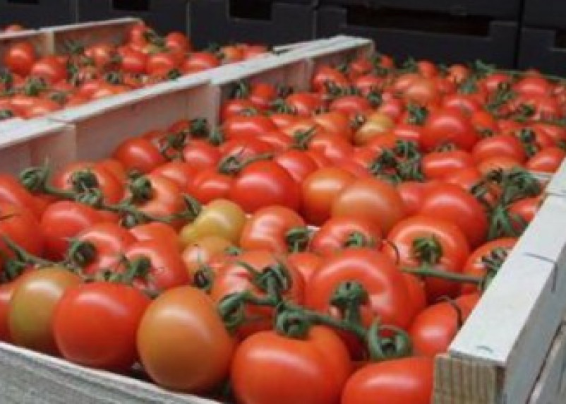 На рынках Смоленска нашли запрещенные товары