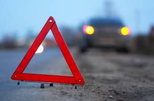 В Смоленской области в ДТП с фурой пострадали два человека