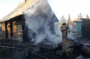 В Смоленской области сгорели два дома, есть пострадавший