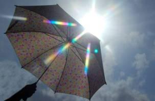 Завтра в Смоленске будет теплее, но по-прежнему дождливо