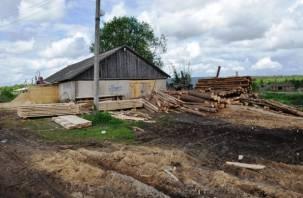 Житель Рославльского района напилил лес на 350 тысяч рублей