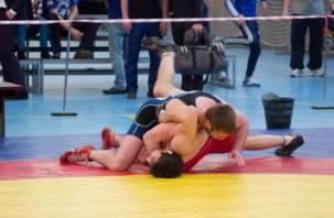 Смоленские борцы выступят на чемпионате России по вольной борьбе