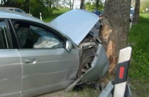 В Кардымовском районе водитель врезался в дерево