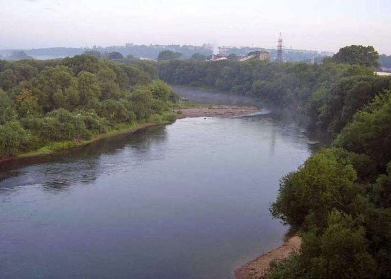 В Смоленском районе на берегу Днепра найдены останки человека