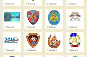 Смолянам предлагают выбрать эмблему и лозунг Года пожарной охраны