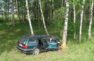 В Темкинском районе водитель врезался в дерево