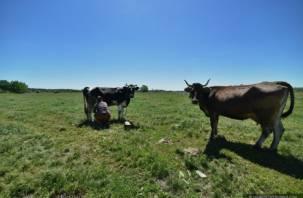 Смоленские аграрии недовольны субсидиями «Мираторгу»