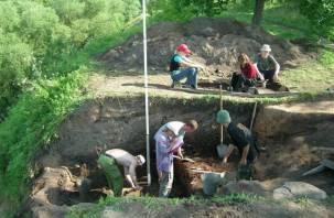 Московские студенты раскопали в Гнездове плетень