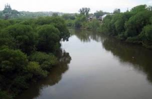 Из-за дождей Днепр в Смоленске разлился сильнее, чем в половодье