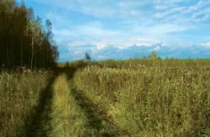 В Смоленской области не используются 18,8% сельхозземель