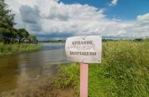 Чиновники «топят» смолян в местных водоемах