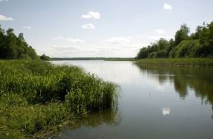 В Сычевском районе утонул мужчина