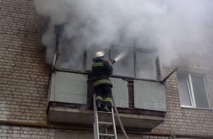 В Починковском районе в огне погиб мужчина