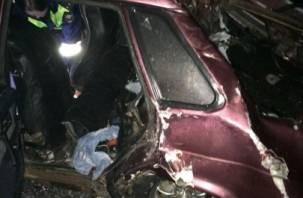 Трое детей и взрослые пострадали в результате ДТП в Вяземском районе