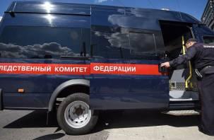 Смолянин вместе с друзьями избил жителя Петербурга, скинув под поезд