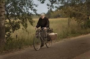В Рудне водитель легковушки сбил пенсионера на велосипеде