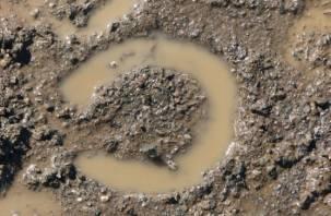 Лошадиные следы привели полицию к руднянскому преступнику