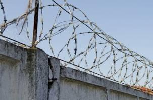 Смолянин перебросил через забор колонии наркотики с камнями