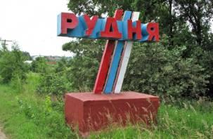 Трое грузин незаконно пересекли границу в Руднянском районе