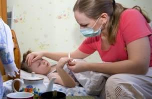 На Смоленщине прогнозируется рост детской заболеваемости ОРВИ