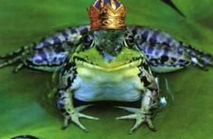 В Смоленском зоопарке выберут короля и королеву красоты