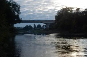 В Смоленске пожилая женщина разбилась, упав с моста в Днепр