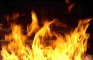В Вязьме пожар потушили горожане