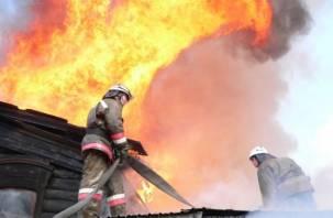 В Смоленской области пожар унес жизни семи человек
