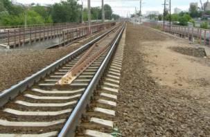 Владельцы смоленского завода азотных удобрений построят собственную железную дорогу