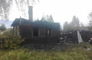 В Демидове в горящем доме погибли трое мужчин