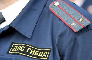 Смоленский водитель набросился с кулаками на инспектора ГИБДД