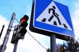 С сегодняшнего дня в Смоленске «возьмутся» за пешеходов