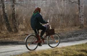 В Рославле пенсионерка на велосипеде попала под «Газель»