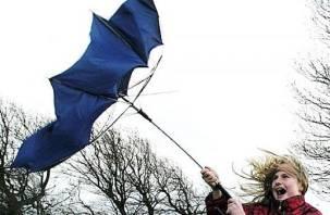 МЧС объявило в Смоленском регионе штормовое предупреждение
