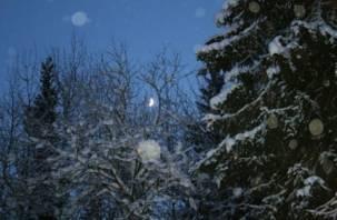 Сегодня ночью на Смоленщине мороз окрепнет