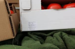 Под Смоленском 17 тонн помидоров измельчили и закопали