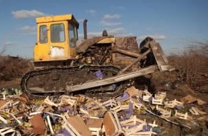 В Рудне уничтожили более 6 тонн овощей и фруктов